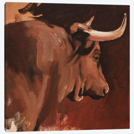 Toro Head Colorado (study 15) Canvas Print #ZHO154} by Zil Hoque Canvas Artwork