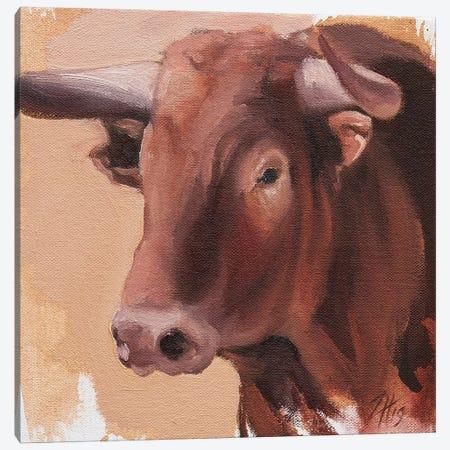 Toro Head Colorado (study 19) Canvas Print #ZHO155} by Zil Hoque Canvas Art