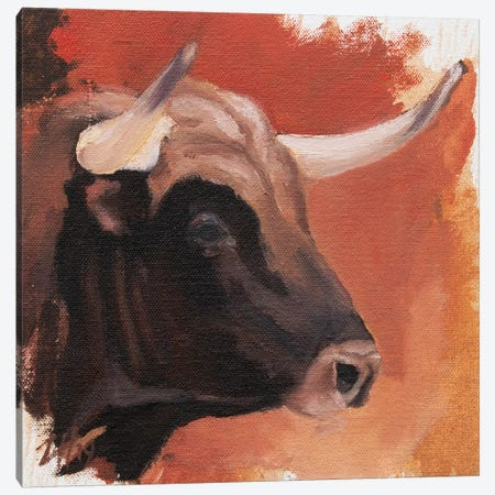 Toro Head Colorado (study 28) Canvas Print #ZHO157} by Zil Hoque Canvas Artwork