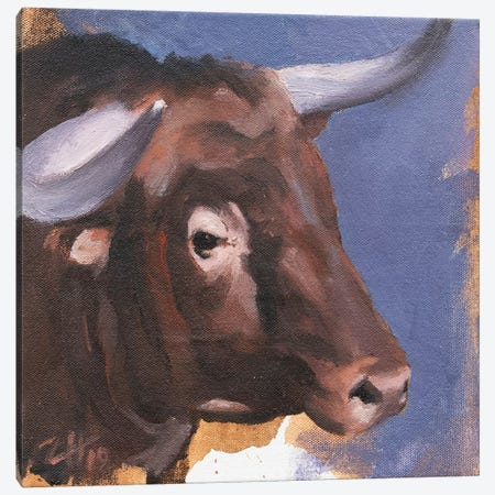 Toro Head Colorado (study 55) Canvas Print #ZHO161} by Zil Hoque Canvas Art