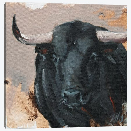Toro Head Negro (study 44) Canvas Print #ZHO181} by Zil Hoque Canvas Art