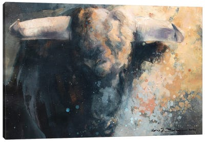 Horns VI Canvas Art Print