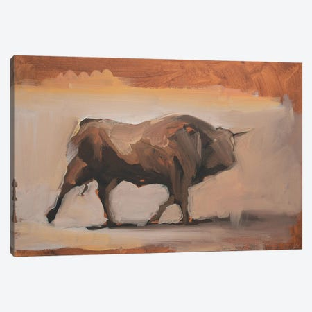 Toro Essay XIX Canvas Print #ZHO220} by Zil Hoque Canvas Art Print