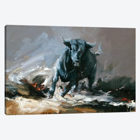Tempest (Study I)  Canvas Print #ZHO23} by Zil Hoque Canvas Wall Art