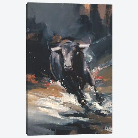 Tempest II Canvas Print #ZHO25} by Zil Hoque Canvas Art Print