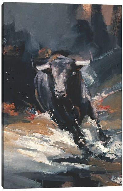 Tempest II Canvas Art Print