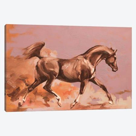 Arab II Canvas Print #ZHO50} by Zil Hoque Canvas Art Print
