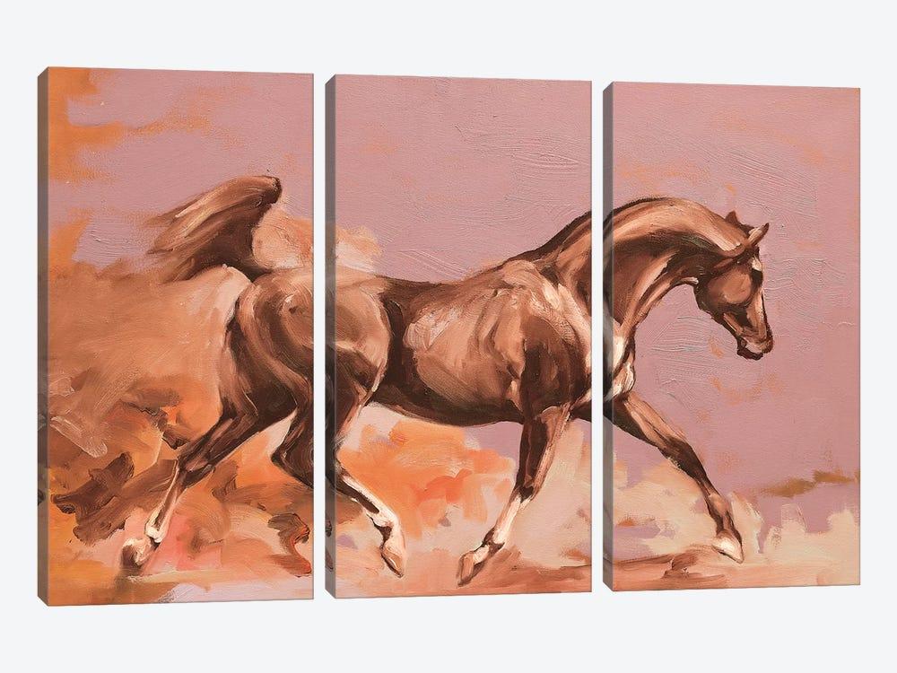 Arab II by Zil Hoque 3-piece Canvas Art
