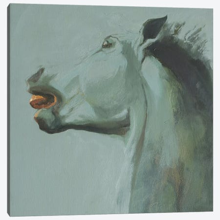 Cara III Canvas Print #ZHO55} by Zil Hoque Canvas Art
