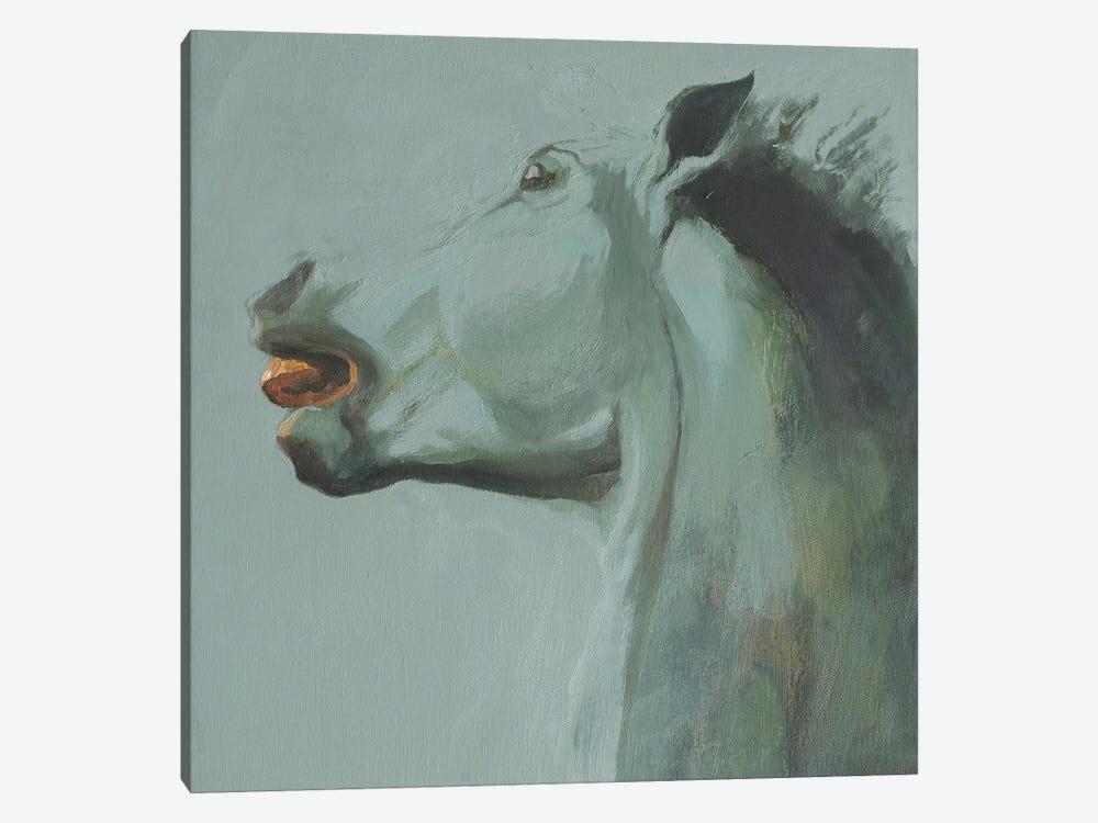 Cara III by Zil Hoque 1-piece Canvas Print