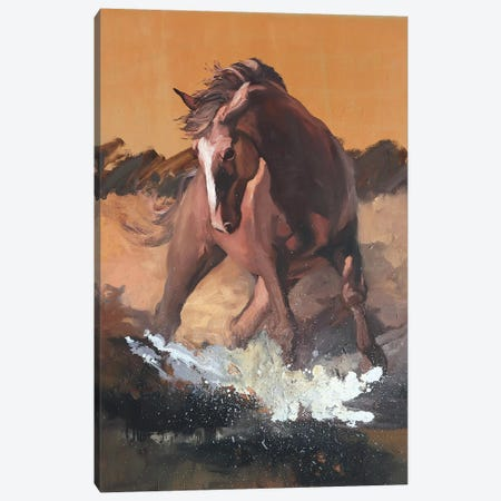 Splash  Canvas Print #ZHO82} by Zil Hoque Canvas Art