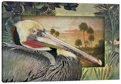 Pelican Paradise I Canvas Art Print
