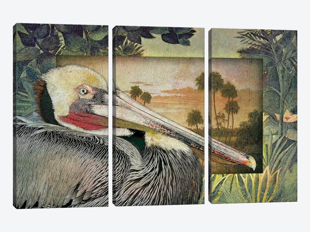 Pelican Paradise I by Steve Hunziker 3-piece Canvas Print