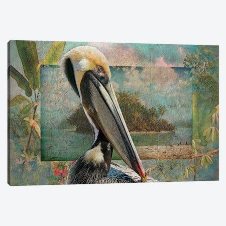 Pelican Paradise II 3-Piece Canvas #ZIK11} by Steve Hunziker Canvas Art