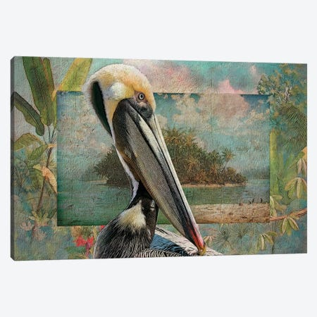 Pelican Paradise II Canvas Print #ZIK11} by Steve Hunziker Canvas Art