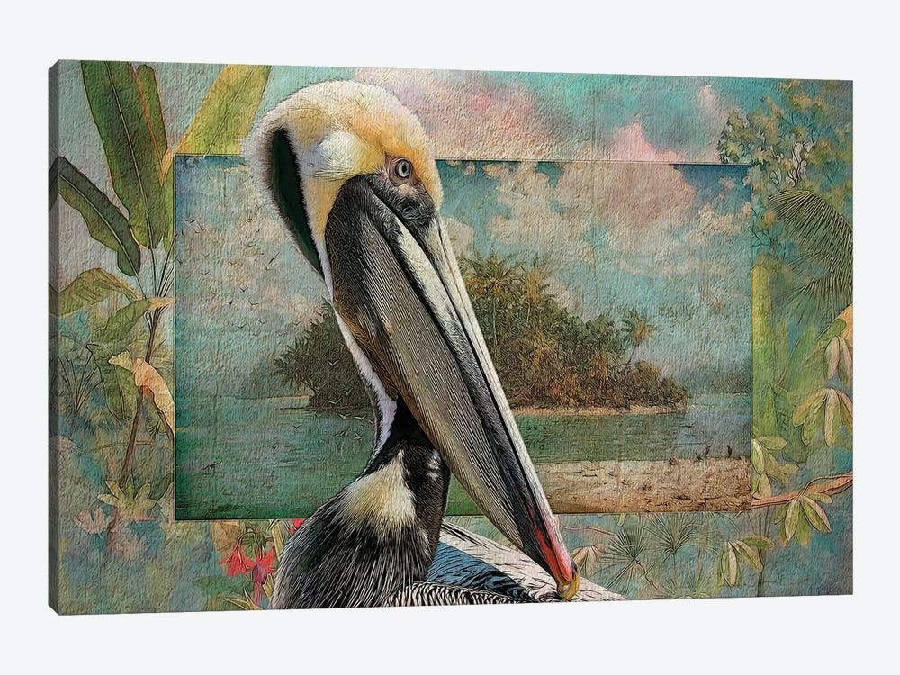 Pelican Paradise II by Steve Hunziker 1-piece Canvas Wall Art