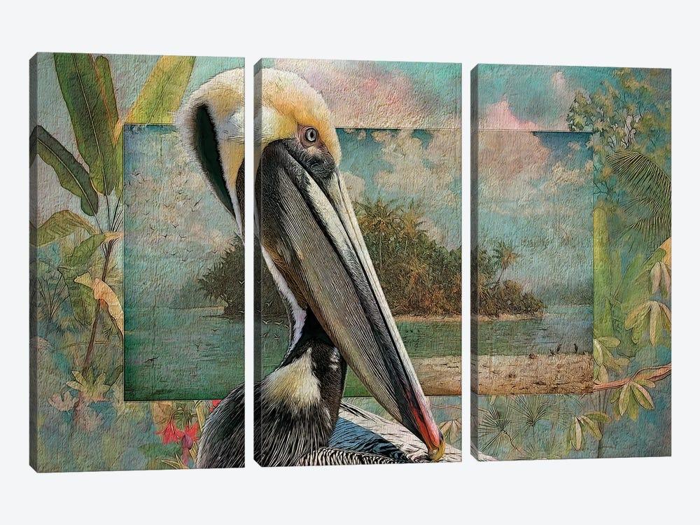 Pelican Paradise II by Steve Hunziker 3-piece Canvas Art