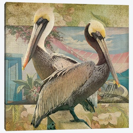 Pelican Paradise IV Canvas Print #ZIK13} by Steve Hunziker Canvas Artwork