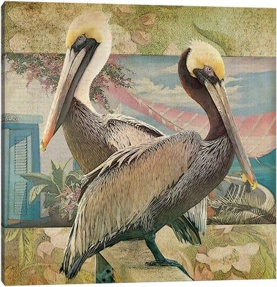 Pelican Paradise IV Canvas Art Print