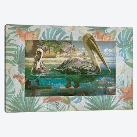Pelican Paradise V Canvas Print #ZIK14} by Steve Hunziker Art Print