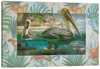 Pelican Paradise V Canvas Art Print