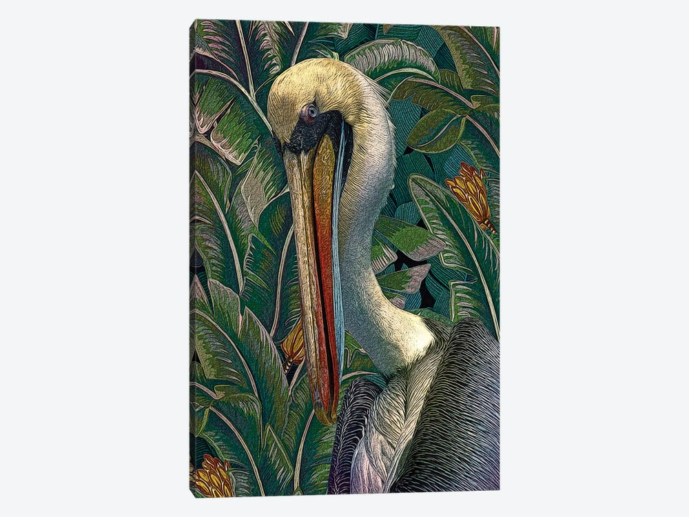 Primal Pelicana by Steve Hunziker 1-piece Canvas Art Print