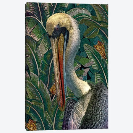 Primal Pelicana Canvas Print #ZIK4} by Steve Hunziker Canvas Art Print