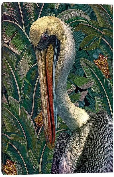 Primal Pelicana Canvas Art Print