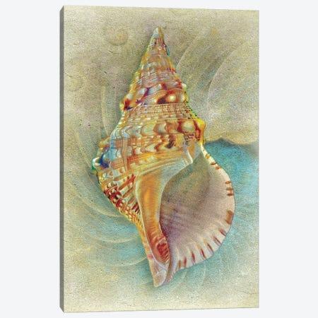 Aquatica I Canvas Print #ZIK6} by Steve Hunziker Canvas Print