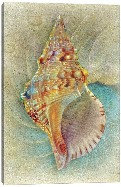 Aquatica I Canvas Art Print