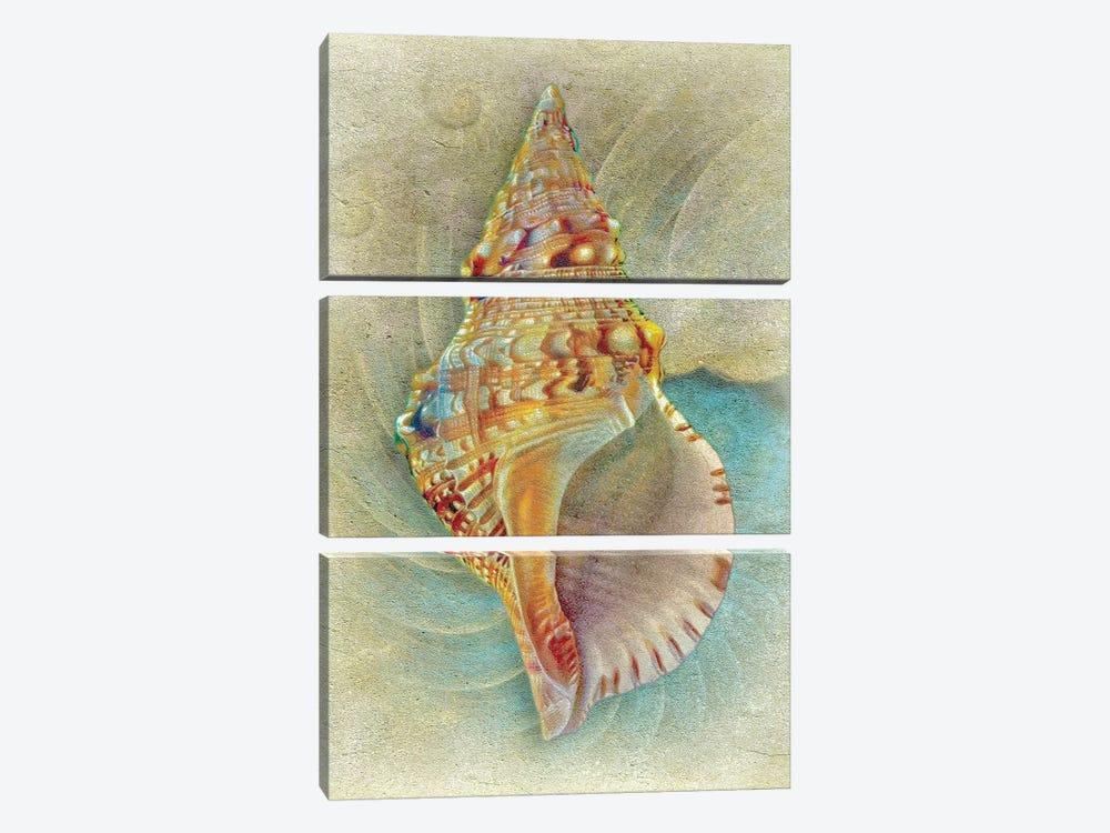 Aquatica I by Steve Hunziker 3-piece Canvas Print