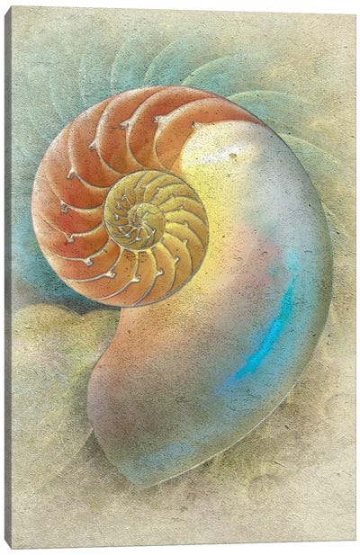 Aquatica II Canvas Art Print