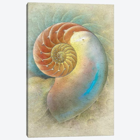 Aquatica II 3-Piece Canvas #ZIK7} by Steve Hunziker Canvas Print