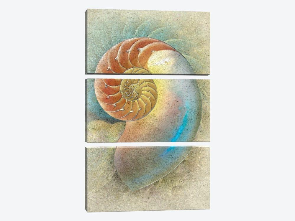 Aquatica II by Steve Hunziker 3-piece Canvas Wall Art
