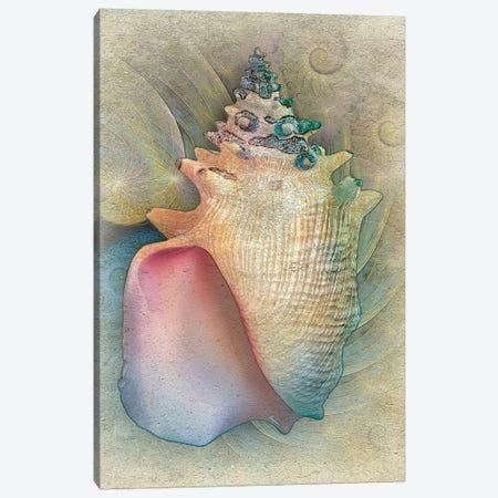 Aquatica IV 3-Piece Canvas #ZIK9} by Steve Hunziker Canvas Artwork