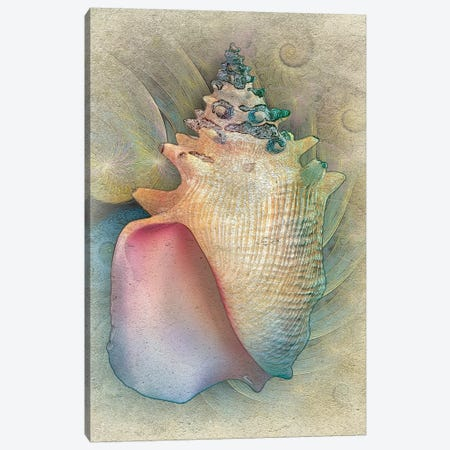 Aquatica IV Canvas Print #ZIK9} by Steve Hunziker Canvas Artwork