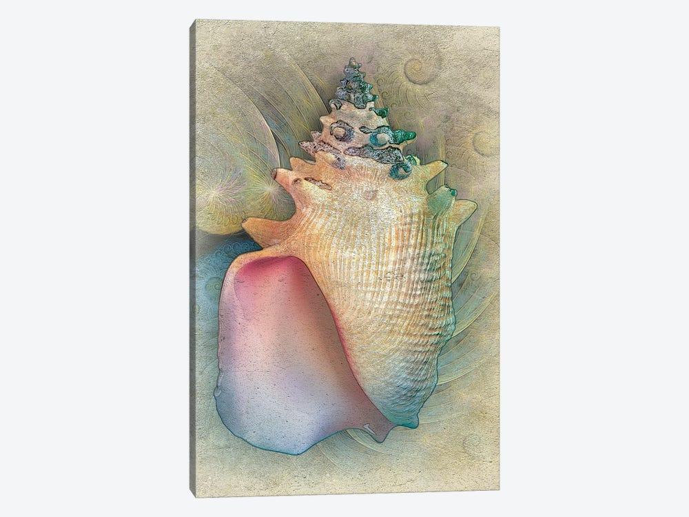 Aquatica IV by Steve Hunziker 1-piece Canvas Art