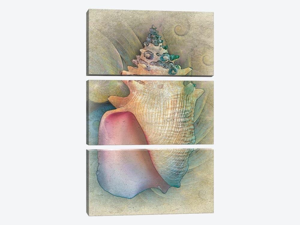 Aquatica IV by Steve Hunziker 3-piece Canvas Artwork
