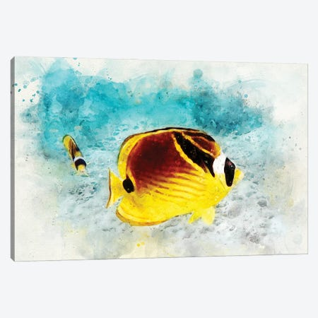 Raccoon Butterflyfish Watercolor Canvas Print #ZLW13} by Christine Zalewski Canvas Artwork