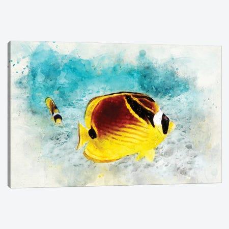 Raccoon Butterflyfish Watercolor Canvas Print #ZLW13} by Christine Zalewski Canvas Artwork