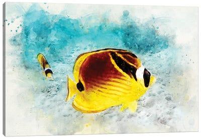 Raccoon Butterflyfish Watercolor Canvas Art Print