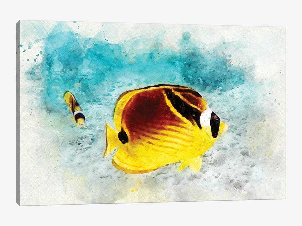 Raccoon Butterflyfish Watercolor by Christine Zalewski 1-piece Art Print