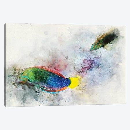 Yellowtail Wrasse Watercolor Canvas Print #ZLW15} by Christine Zalewski Canvas Print