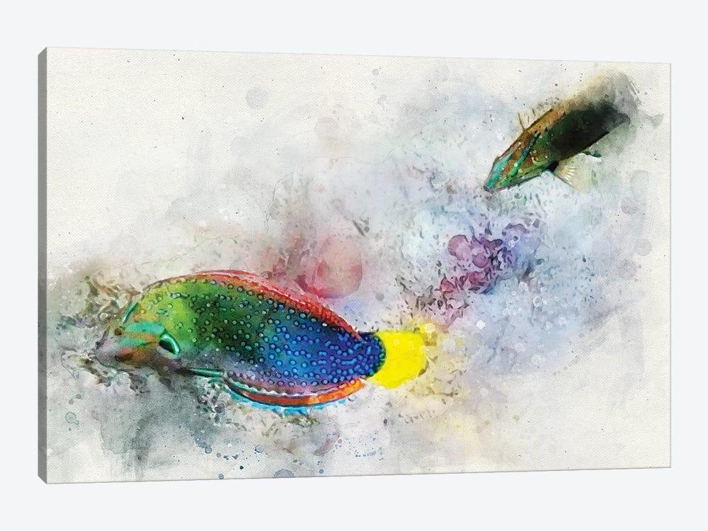 Yellowtail Wrasse Watercolor by Christine Zalewski 1-piece Canvas Print