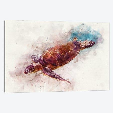 Green Sea Turtle I Canvas Print #ZLW17} by Christine Zalewski Art Print