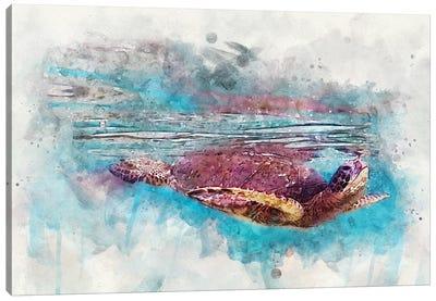 Green Sea Turtle II Canvas Art Print