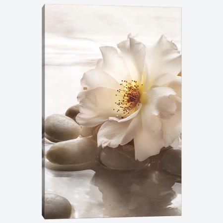 Antique Rose Garden Retreat I Canvas Print #ZLW27} by Christine Zalewski Canvas Art