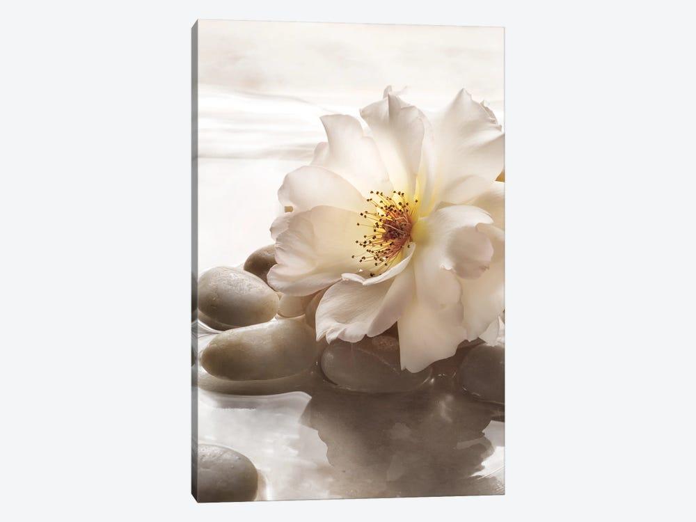 Antique Rose Garden Retreat I by Christine Zalewski 1-piece Canvas Artwork