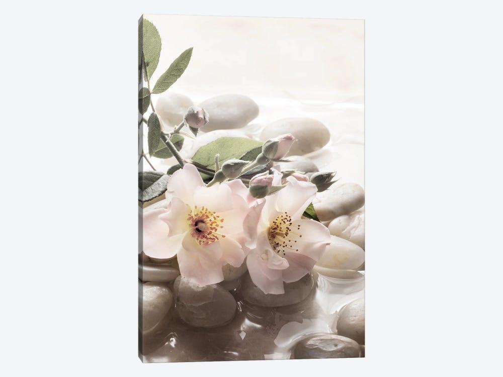 Antique Rose Garden Retreat II by Christine Zalewski 1-piece Canvas Art Print