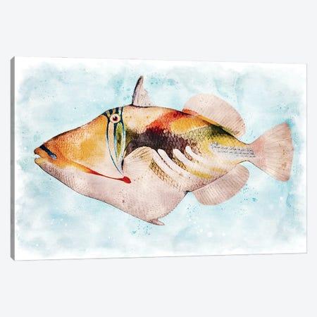 Hawaiian Picasso Triggerfish Watercolor Canvas Print #ZLW47} by Christine Zalewski Canvas Artwork